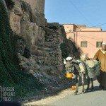 vida rural marruecos