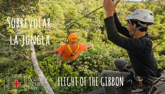Sobrevolar la selva en Flight of the Gibbon