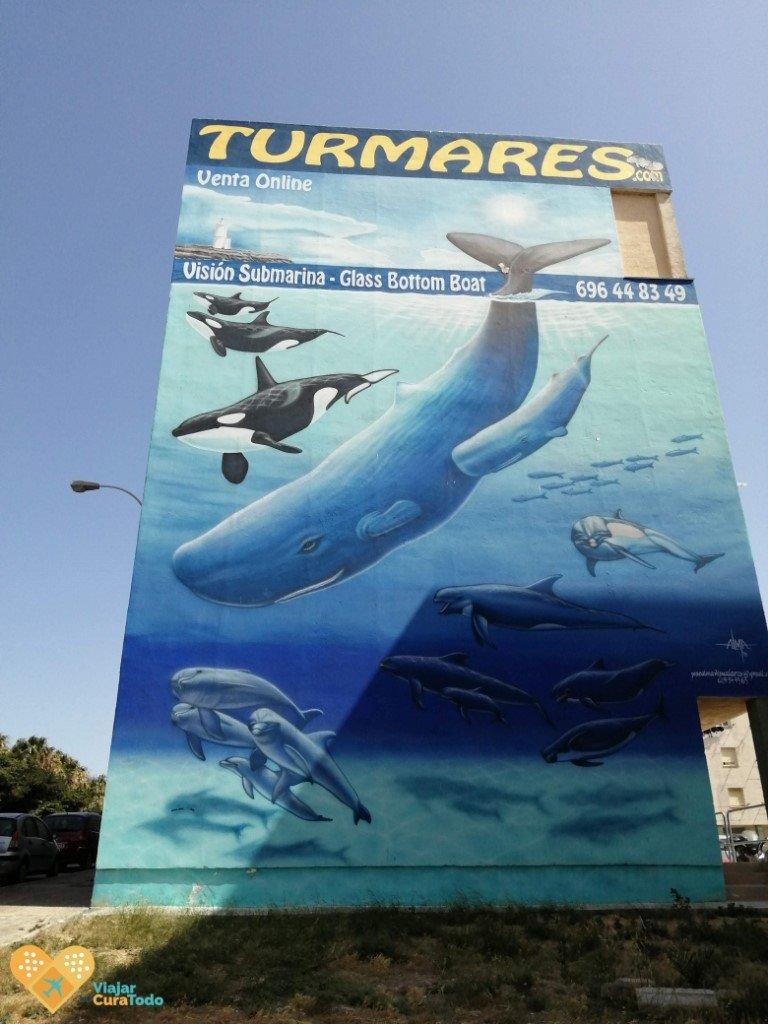visión submarina Tarifa