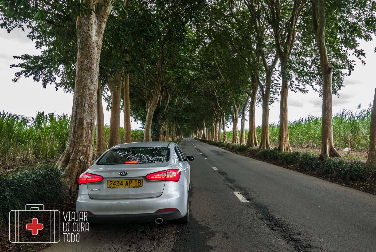 Europcar Mauricio
