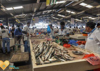 fish market dubai