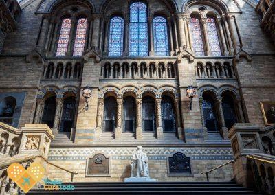 darwin statue museum london