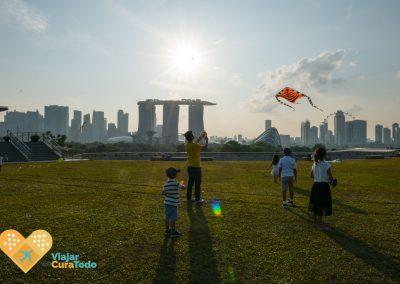 cometas en singapur