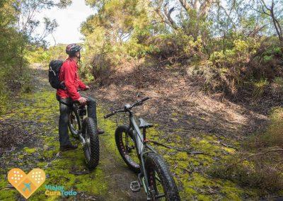 fatbikes tour in kangaroo island